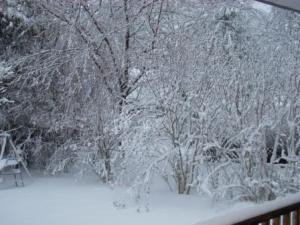 Feb 28 snow 2