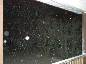 Feb 28 snow