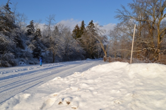 snow in the laneway