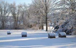 Hay bales in snow