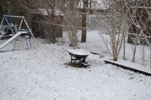Return to winter, wheelbarrow