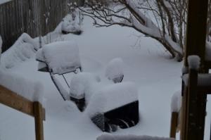 Snowblower in Snow
