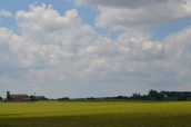 Farmer's Field 3