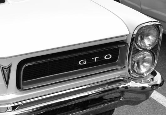 White Mustang GTO