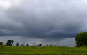 Half Sun-Half Rain field