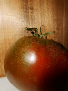 Changing Tomato 1