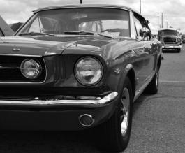 Mustang 3 (800x663)