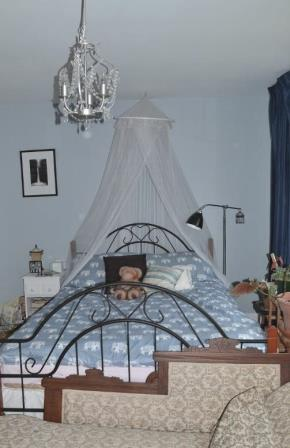 bed_ed