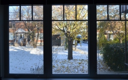 Window shade (800x503)