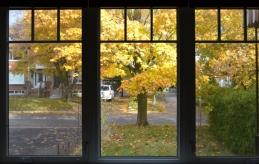 Window sun (800x507)