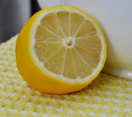 Lemonade (7) (800x711)