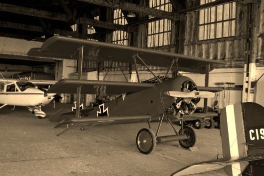 Bi-planes2 (800x533)