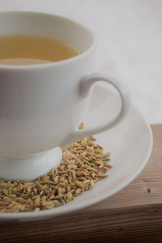 Fennel-teacup.JPG