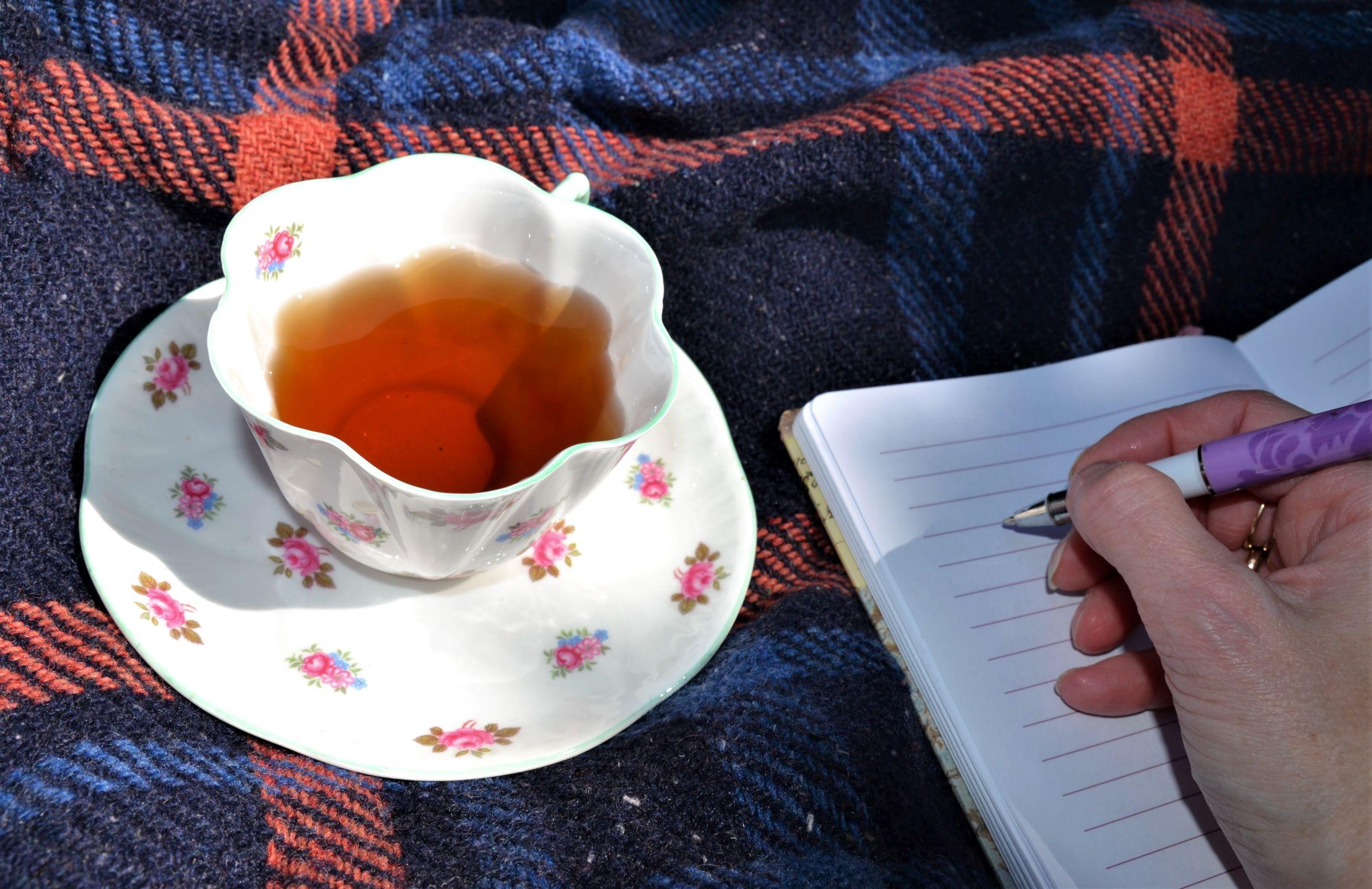 Empty journal_ed