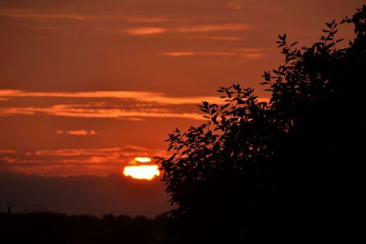 Sunset1_ed