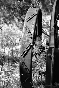 wagon (13)_ed