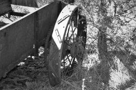 wagon (14)_ed