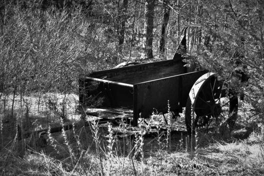 Wagon (15)_ed